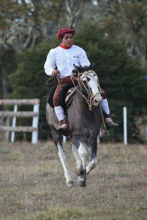 Fue encontrado ahogado el caballo del joven de Tolhuin desaparecido