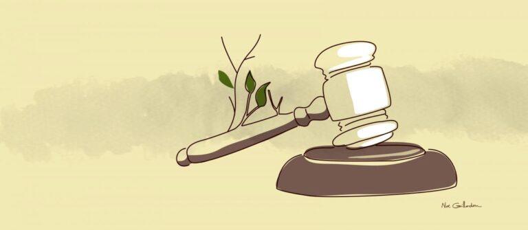 Justicia climática y Justicia social, dos conceptos que se entrelazan
